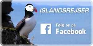 islandsrejser