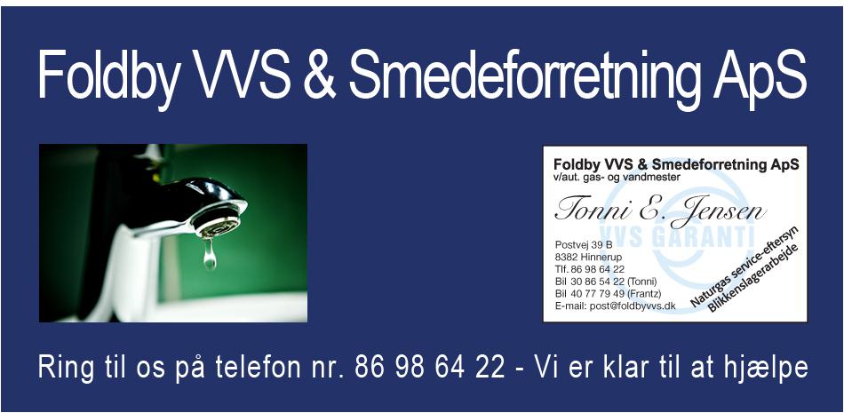 fvvs12